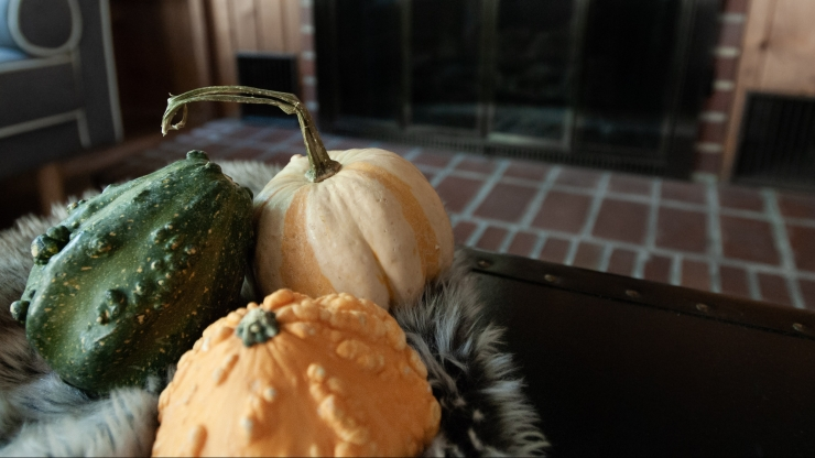 Fall gourds nestled in next to the fireplace in preparation for fall